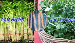 Điểm mặt những loại rau dễ nhiễm giun sán nhất