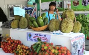 Hàng loạt trái cây đầu mùa giá cao vút, bán 1 quả thu về tiền triệu