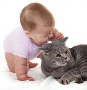 Ngứa nhiều chỉ nghĩ là viêm da không ngờ bị giun sán chó mèo