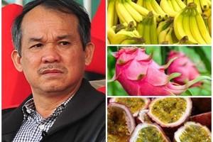 Trồng, bán trái cây, bầu Đức thu về hơn 3,4 nghìn tỷ đồng