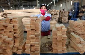 Trung Quốc ồ ạt đầu tư ngành gỗ, chiêu né thương chiến Mỹ - Trung?