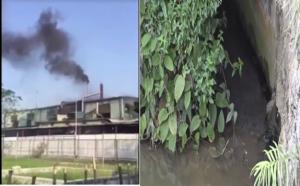 Sunhouse xả thải ra môi trường: Từng bị xử phạt 300 triệu nhưng vẫn 'chứng nào tật nấy'?
