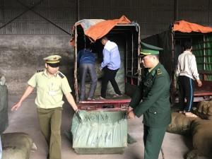 Mô tô ba bánh gắn lo go thương binh để vận chuyển hàng hóa nhập lậu