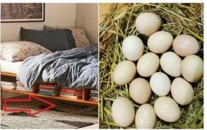 Thấy mẹ chồng luộc trứng rồi bí mật bỏ vào giường qua đêm, con dâu tưởng