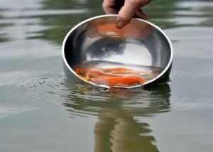 Những cấm kị khi phóng sinh cá chép tiễn ông Táo về trời mà bạn không thể bỏ qua kẻo mất hết tài lộc