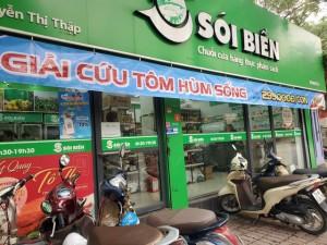 Giải cứu tôm hùm ở Hà Nội: Hàng đồng giá 299.000 đồng/con 'cháy' hàng