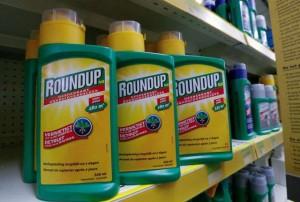 Siết quản lý thuốc bảo vệ thực vật có chứa hoạt chất Glyphosate