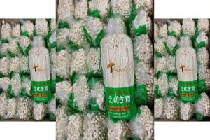 Một công ty tại Hoa Kỳ thu hồi nấm enoki nhập khẩu từ Hàn Quốc vì lo ngại nhiễm khuẩn