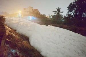 Vụ bọt trắng ngập suối ở Bình Dương: Sở Tài nguyên - Môi trường khẳng định Lix là thủ phạm