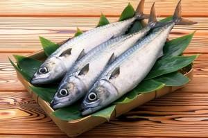 5 cách bảo quản cá tươi lâu không lo bị ươn