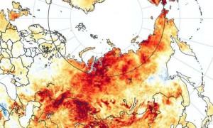 Nóng kỷ lục 38 độ C đảo lộn hoàn toàn cuộc sống nơi lạnh nhất thế giới