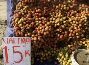 Trái cây giá rẻ ê hề, người mua vẫn lưỡng lự