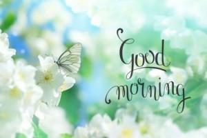 Những động tác giúp loại bỏ bệnh tật với 10 phút buổi sáng mỗi ngày