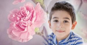 Sự thật rơi nước mắt sau đơn hàng hoa cẩm chướng kéo dài 60 năm