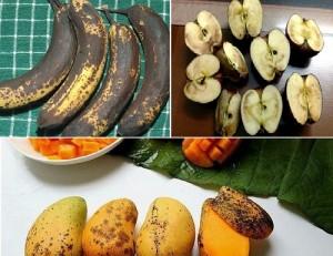 Những loại trái cây khi có dấu hiệu này cần ném bỏ vì có thể nuôi dưỡng tế bào ung thư