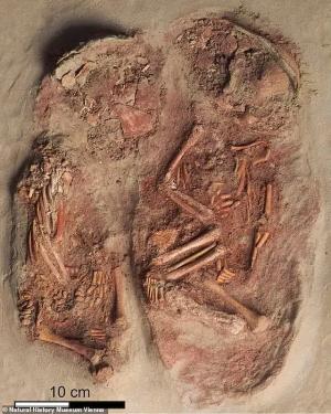 Phát hiện 2 bộ h.ài c.ốt em bé nhỏ xíu nhuốm màu đỏ m.áu, các nhà khoa học sửng sốt khi biết câu chuyện sinh đôi cùng trứng từ 30.000 năm trước