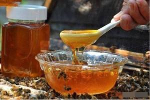 Uống mật ong nếu có 1 trong 6 dấu hiệu này cần dừng ngay kẻo hối hận