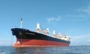 5 thuyền viên tàu hàng Ocean Amazing dương tính với COVID-19
