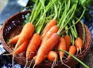 8 siêu thực phẩm tăng cường sức khoẻ, ngăn bệnh phụ khoa cho phụ nữ