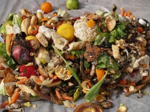 Cách nhận biết thực phẩm hỏng đề phòng ngộ độc vào ngày hè