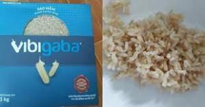 Gạo mầm Vibigaba của Tập đoàn Lộc trời bị