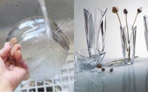 Giấm và thuốc tẩy: Sự khác biệt giữa chất làm sạch và chất khử trùng