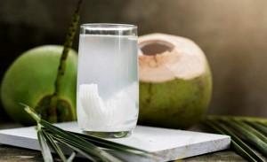 Kết quả bất ngờ khi soi nước dừa dưới kính hiển vi và 'thời điểm vàng' uống nước dừa trong ngày giúp phụ nữ