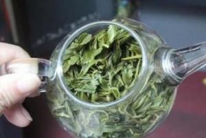 Sử dụng bã trà để trồng cây, làm đúng điều này cây cối sẽ luôn tốt tươi