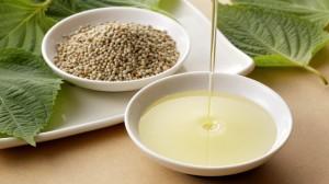 Loại rau siêu bổ dưỡng, khi ép thành dầu tốt hơn cả dầu đậu phộng nhưng không phải ai cũng biết cách tận dụng