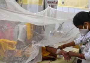 Đã xác định chân tướng 'virus bí ẩn' giế.t ch.ết hàng chục trẻ em ở Ấn Độ: 'Hung thủ' không hề xa lạ