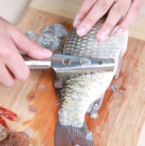 Bộ phận này của cá bị nhiều người vứt đi nhưng không ngờ lại có công dụng chữa bệnh cực tốt