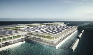 Độc đáo trang trại nổi khổng lồ trồng rau nuôi cá trên mặt nước