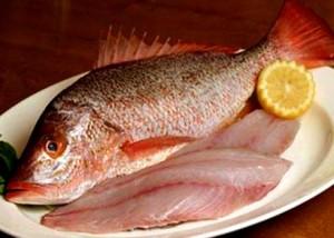 Những cách ăn cá gây bệnh trọng
