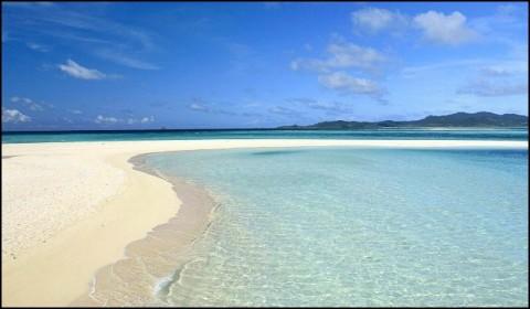 Mùa hè đi biển chú ý 5 tác nhân gây bệnh trong cát biển không thể bỏ qua