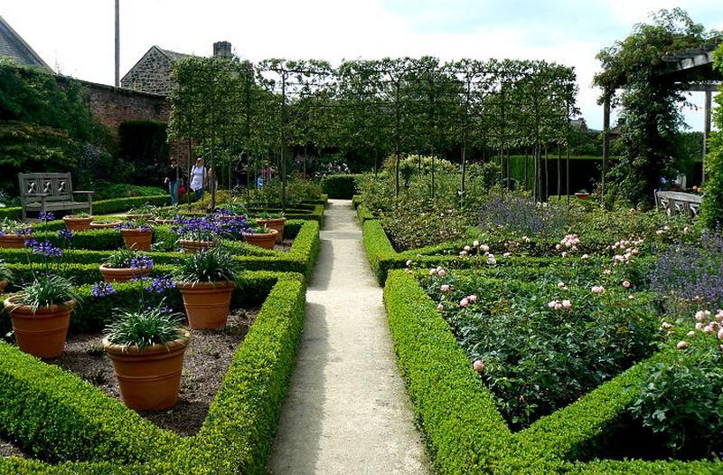 Khu vườn đẹp thu hút rất nhiều du khách. Ảnh: Trí thức trẻ
