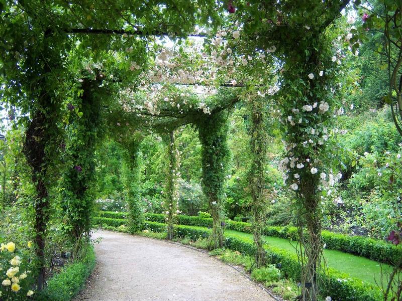 Vẻ đẹp nên thơ và lãng mãn trong khu vườn đã thu hút 800.000 du khách đến thăm mỗi năm. Ảnh: Trí thức trẻ