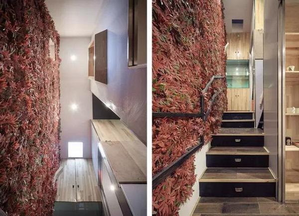 Nhờ có những lá phong đỏ trang trí, lối đi lên cầu thang như đường vào một không gian ấm cúng và lãng mạn.