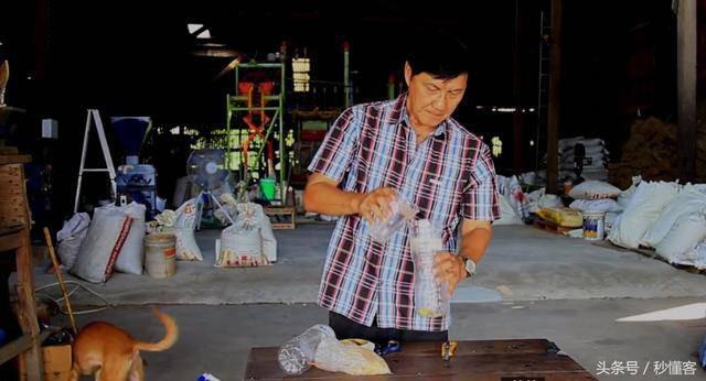 Cách người Thái diệt trăm con gián chỉ với một chai nhựa khiến cả thế giới muốn học theo