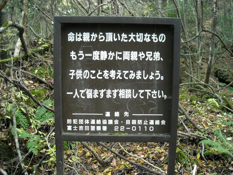 Aokigahara: Khu rừng khiến hàng nghìn người tự sát tại Nhật Bản