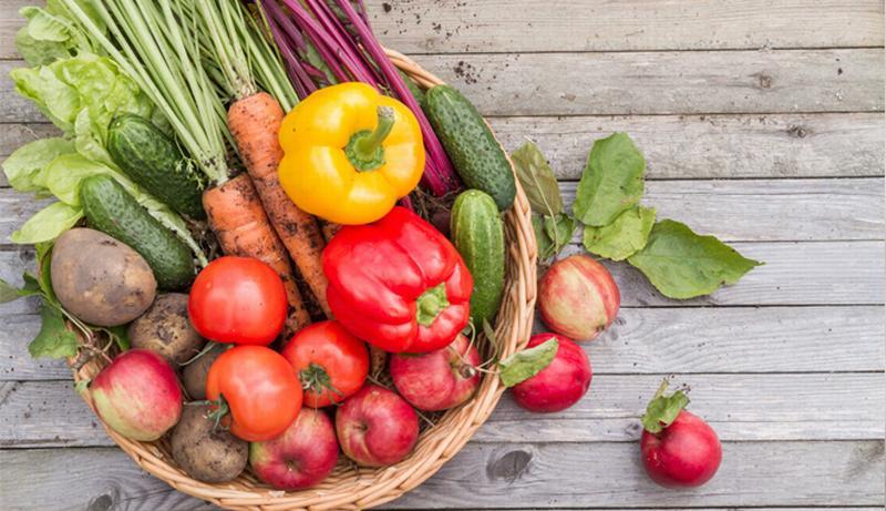 Các loại rau củ quả quen thuộc nhưng dễ