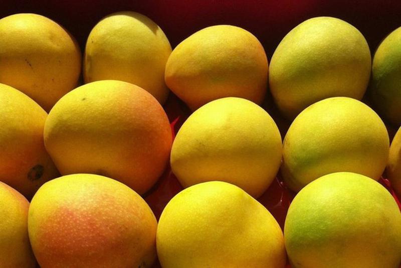 Từ năm 1970, những quả xoài Northern Territory đầu tiên được bán đấu giá tại sàn đấu giá Sydney Markets và thu hút được sự chú ý của nhiều nhà bán lẻ hoa quả cũng như các hãng bán buôn.