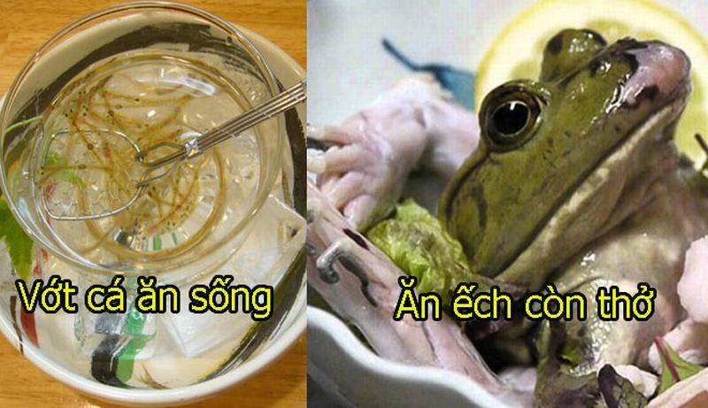 Ngoài cá sống, ếch sống, đây là những món ăn