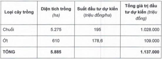 hagl-agrico-lo-rong-hon-220-ty-tai-san-bau-duc-van-tang-len-moc-3-400-ty-dong
